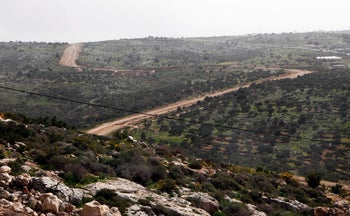 A view from Alfei Menashe, a settlement southeast of the Palestinian town of Qalqiliya, approximately 4 km beyond the Green Line, in the West Bank.