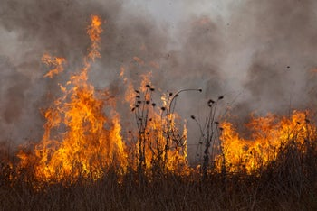 A blaze caused by an incendiary balloon launched from Gaza at Kibbutz Alumim on the border, August 28, 2020.