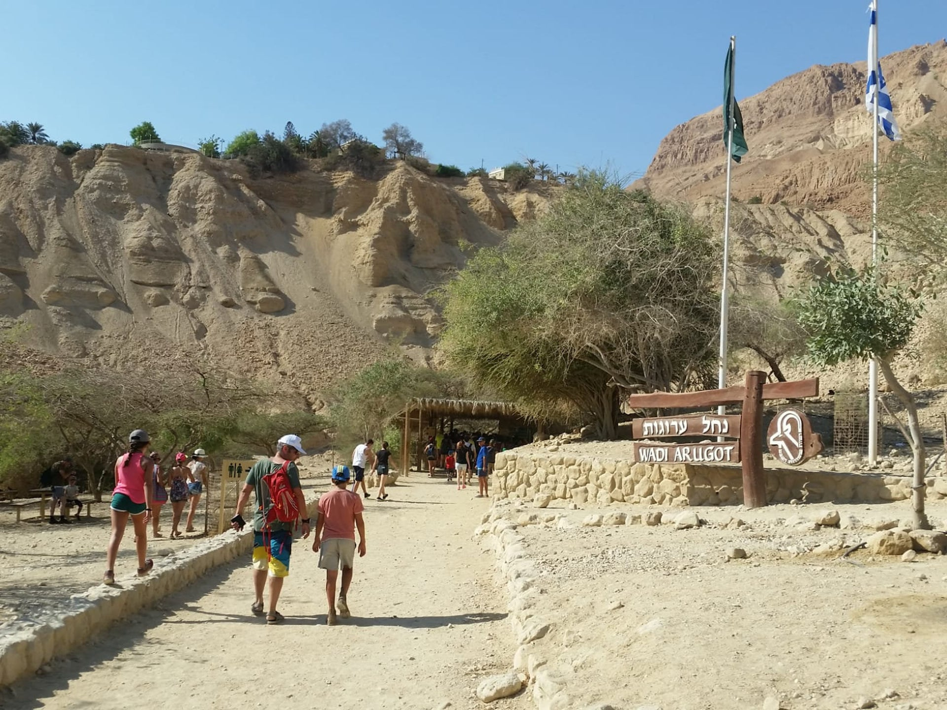 Ein Gedi nature reserve. In a normal year, a million people visit the oasis in the Judean desert.
