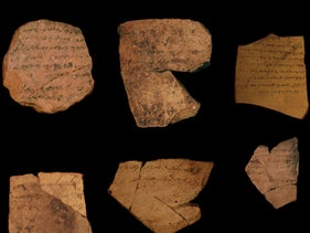 Hebrew ostraca from Arad