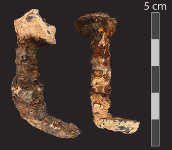 The pair of mysterious Roman-period nails that surfaced at a Tel Aviv University lab
