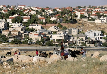A boy riding a donkey herds goats and sheep near the settlement of Kedar in the West Bank, June 30, 2020.