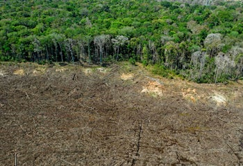An aerial picture of a deforested area close to Sinop, Mato Grosso State, Brazil, August 7, 2020.