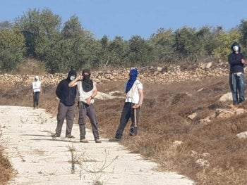 Masked settlers in an olive grove near the village of Burqa, West Bank, October 2020.