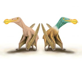 Visions of a pterosaur with and without feathers