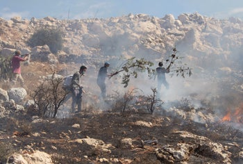 Settlers near their outpost fighting an olive-grove fire that was caused by the Israeli police's tear gas canisters at the West Bank village of Burqa, October 16, 2020.