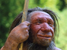 Artist's impression of what a Neanderthal may have looked like.