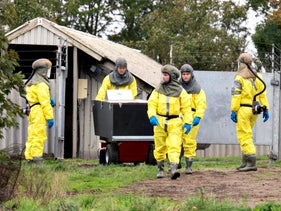 Employees from the Danish Veterinary and Food Administration and the Danish Emergency Management Agency wearing PPE arrive to start killing minks in Gjol, Denmark, October 08, 2020.