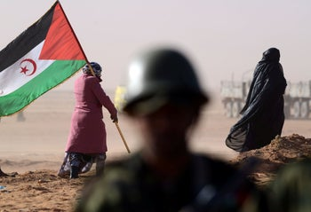 A Sahrawi woman holds a Polisario Front's flag in the disputed territory of Western Sahara, February 27, 2016.