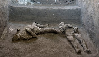 Plaster casts of two bodies found in an underground corridor in of a villa outside Pompeii
