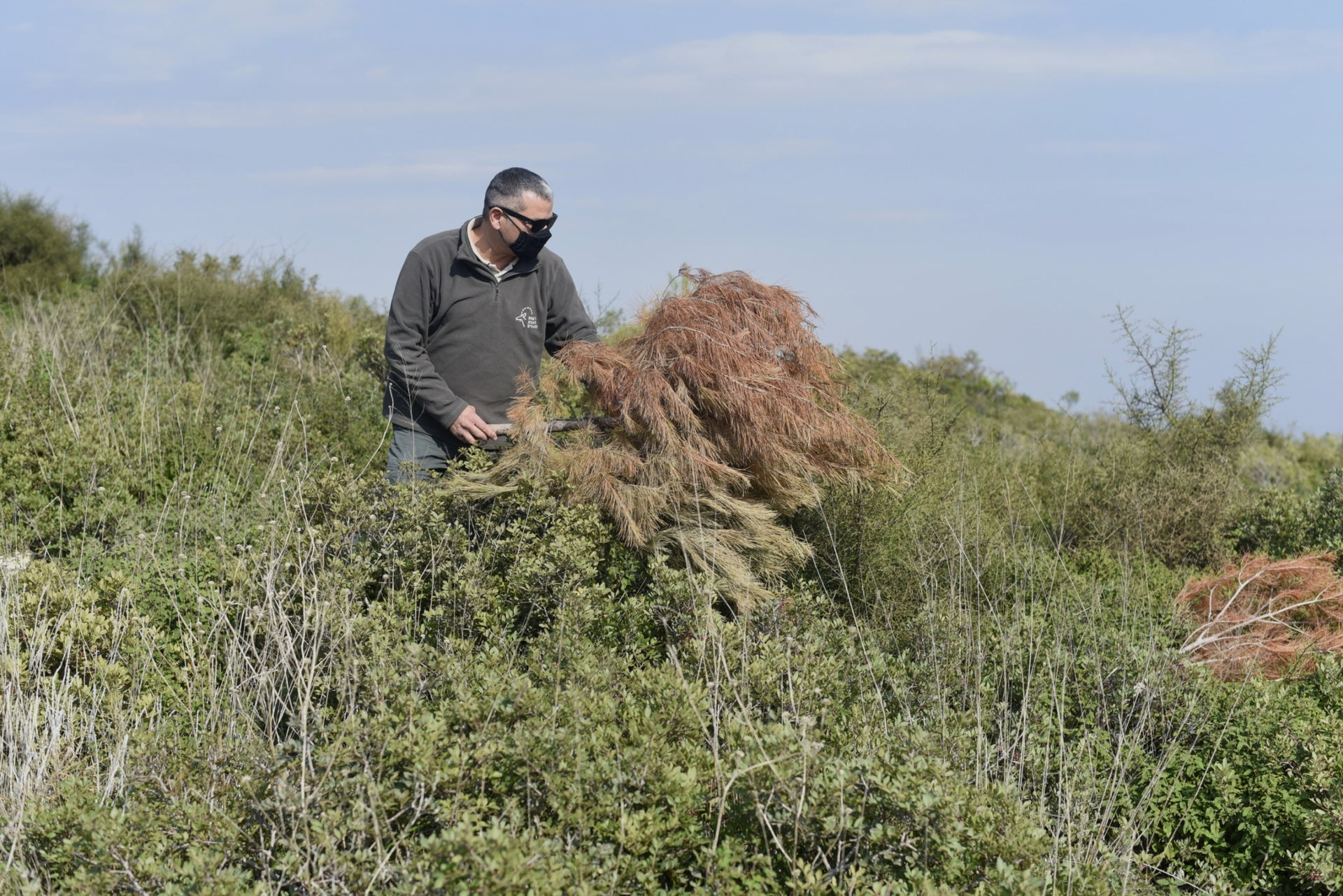 Natan Elbaz, the forestry chief at the Israel Nature and Parks Authority, at Mount Carmel, November 2020.