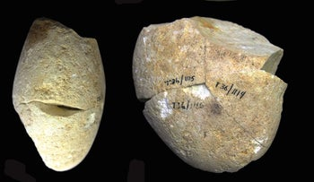 The dolomite abrading stone from the Tabun Cave, south of Haifa, Dec 2020
