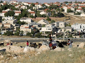 A boy riding a donkey herds goats and sheep near the Jewish settlement of Kedar in the West Bank, June 30, 2020.