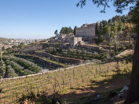 Terraces in Al-Walaja, a Palestinian village in the West Bank.