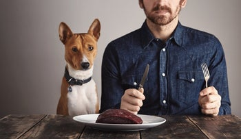 Man, dog and meat