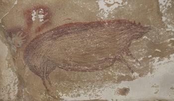 Closeup of the pig painting at Leang Tedongnge, done in dark red/mulberry colored ocher.