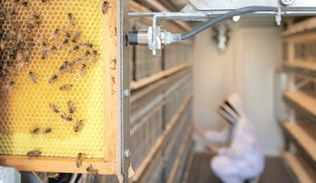A robotic beehive by Israeli start-up BeeWise that aims to combat the issue of mass bee deaths worldwide