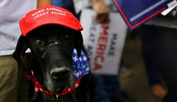 A dog wearing a Make America Great Again (MAGA) hat during a campaign rally for U.S. President Donald Trump ahead of Election Day in Scottsdale, Arizona, U.S., November 2, 2020.