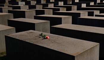 Single roses placed on the concrete blocks at the Memorial to the Murdered Jews of Europe in Berlin on January 27, 2021