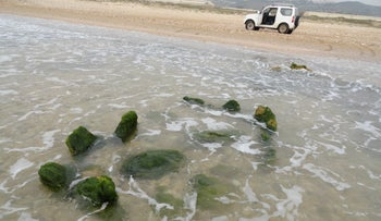 Stone circle now offshore is earliest pickled olive production site, archaeologists believe
