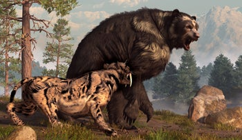 Artist's impression of an irritable meeting between a short-faced bear and saber-toothed cat