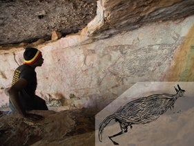 Ian Waina inspecting a Naturalistic painting of a kangaroo, determined to be more than 12,700 years old based on the age of overlying mud wasp nests