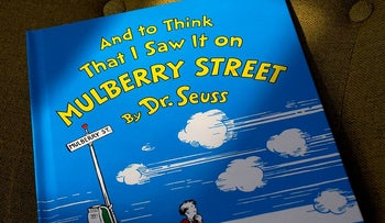 "A copy of the book ""And to Think That I Saw It on Mulberry Street,"" by Dr. Seuss, rests in a chair"