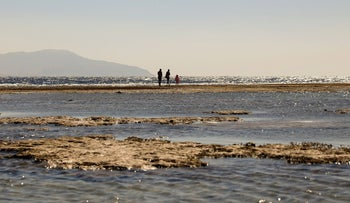 Tourists walk at the beach during a low tide in the Red Sea resort of Sharm el-Sheikh, Egypt February 2021.