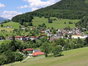 The mountainous site of Prigglitz-Gasteil in Lower Austria, in the easternmost fringe of the Alps.