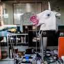 A unicorn mask in a startup office