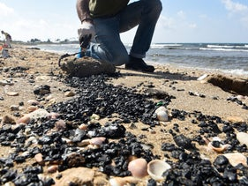 Israelis cleaning tar that washed onto a beach in Haifa, in February.
