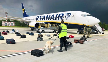 Security use a sniffer dog to check the luggage of passengers on a Ryanair plane in Minsk, on Sunday.